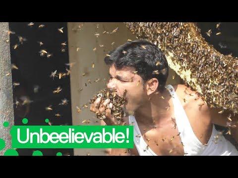 Suu täyteen mehiläisiä – Harrastushan se on tämäkin