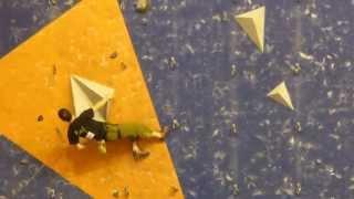 preview picture of video 'Finale coupe de france escalade Riom 2014 vétéran - Michael Lachaise'