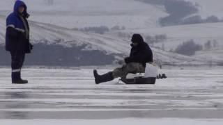 Ловля окуня зимой на виброхвост