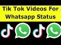 Download Video How To Share Tik Tok Video On Whatsapp Status & Download Videos Without Watermark-2019