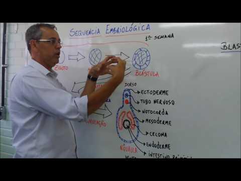 Strongyloidosis kezelés emberben