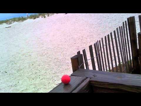 The Little Red Ball visits the Gulf of Mexico