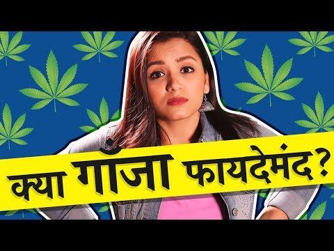 Is weed good for health? (in Hindi) क्या हैं गाँजा पीने के नुक़सान और फ़ायदे?