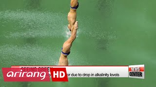 Rio 2016: Green diving pool causes bemusement to divers