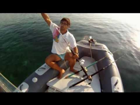 Il gioco la pesca reale su che impigliarsi