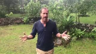BEN FOGLE TALES FROM THE WILDERNESS TOUR 2020