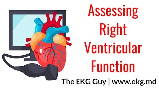 Assessing Right Ventricular Function - ECHO Course l The EKG Guy - www.ekg.md