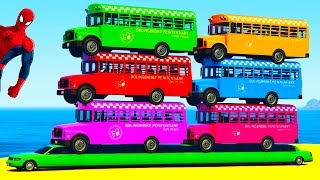 Colors SCHOOL BUSES on Long Car with Spiderman for Kids - Fun Color Cars Cartoon with Nursery Rhymes