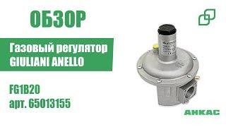 Газовый регулятор GIULIANI ANELLO FG1B20 арт. 65013155