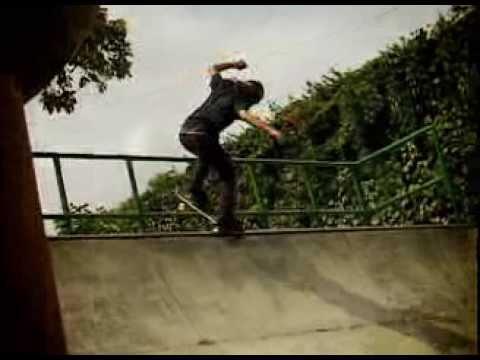 David Gonzalez Flip Skateboards Mini Ramp part