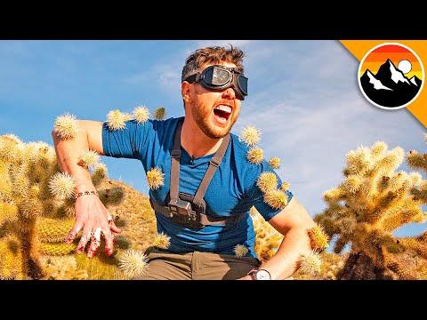 I Ran into a Cactus Maze Blindfolded!