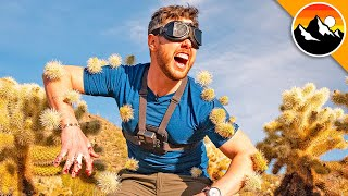 I Ran into a Cactus Maze Blindfolded!