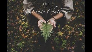 2018   The Gratitude challenge