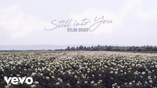 Dylan Brady Still Into You