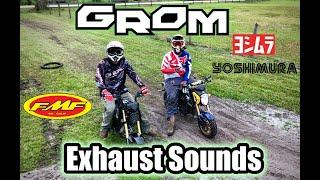 honda grom exhaust comparison - TH-Clip