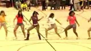 Chris Brown Basketball Game