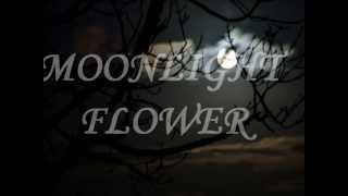 """MOONLIGHT FLOWER"" By MICHAEL CRETU W Lyrics"