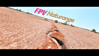FPV Cinematic Naturange   What is FPV   Heuse & WOLFHOWL & Riell - Daylight NCS Freedownload