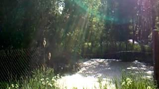 preview picture of video 'Kraina w Kratę - Kluki - Stawek - maj 2011 - HD'