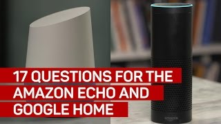 17 questions for the Google Home and Amazon Echo