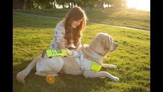 The Guide Dog Tag   Fashioneyesta