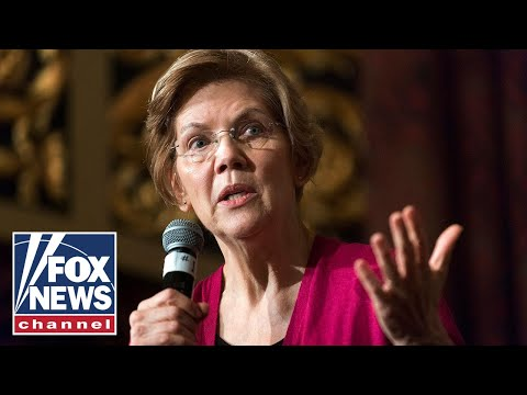 Bongino slams former professor Elizabeth Warren over medicare-for-all