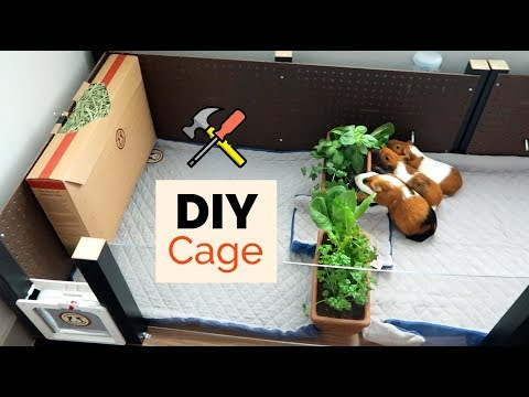 , title : 'Building a Cage out of IKEA tables   GuineaDad