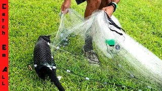 CATCHING CAT fish with NET!
