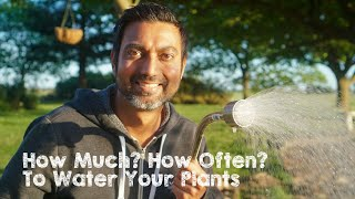 How Much & How Often to Water Your Plants
