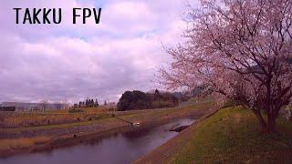 FPV FREESTYLE/SAKUR Parking/ImpluseRCAPEX