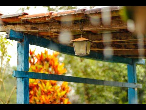Успокаивающие звуки природы, дождя под крышей