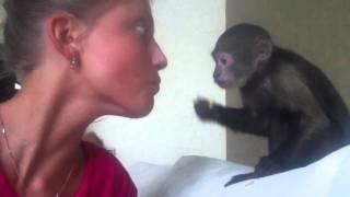 Ирина и обезьяна прикол! Смотреть всем!