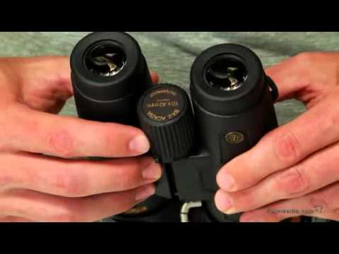 Product Review Video Play Leupold 10x42mm Bx 2 Acadia Binoculars