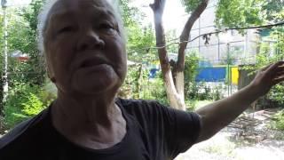 Снос огородов в Ташкенте