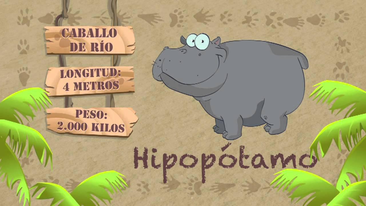 Las características del HIPOPÓTAMO