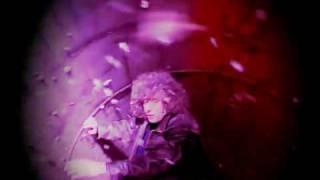 Forte - Branduardi (video ufficiale)