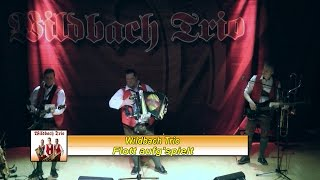 preview picture of video 'Christian Wagner vom Wildbach Trio mit Flott aufg'spielt (Europasaal Weiz)'