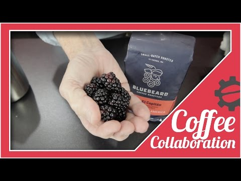 Blackberry Iced Coffee (A.K.A. Deliciousness) | Coffee Collaboration