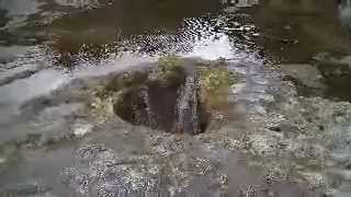 Hawaii Maui blowhole ONLY VIDEO TO SEE RIGHT DOWN THE HOLE!!! I got blasted!