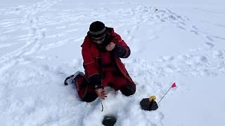 Ловля хариуса зимой на озере