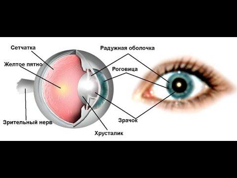 Клиника по коррекции зрения в омске