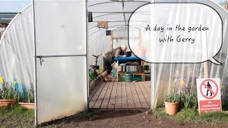 Cherry Orchard Community Garden - Video Diary 3