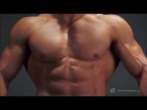 Back Anatomy & Training Program   Built By Science