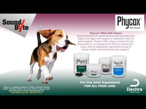Phycox MAX Small Bites Soft Chews (120 soft chews) Video