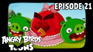 Angry Birds Toons | Hypno Pigs   S1 Ep21