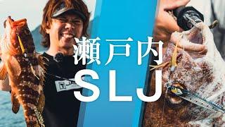 【瀬戸内SLJ】細身のタングステンジグで寄せて食わす!|吉岡進