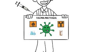 Como as vacinas são produzidas?