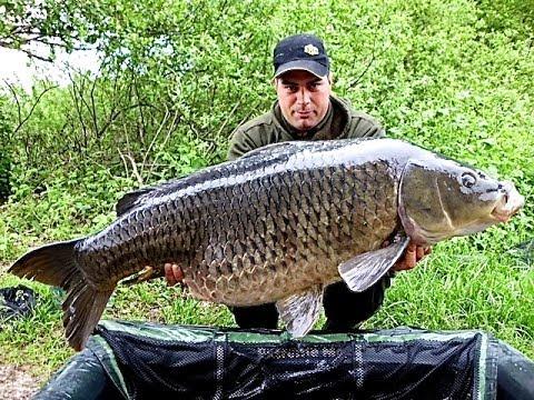 La pesca su Sukhona nella regione di Vologda
