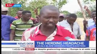 Residents forced to stage demos after camels invade grazing fields in Mrima wa ndege, kilifi county
