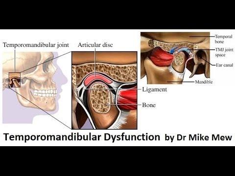 Behandlung der intervertebralen Hernien Verfahren vertebrorevitology